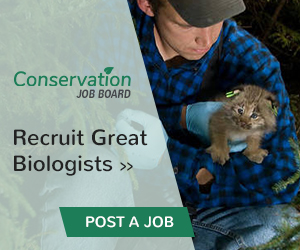 Post a job on conservation job board